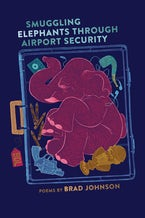 Smuggling Elephants through Airport Security