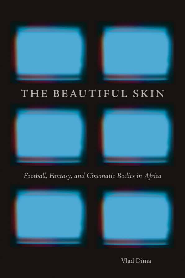 cover of The Beautiful Skin by Vlad Dima