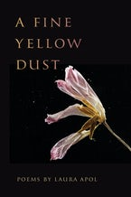 A Fine Yellow Dust